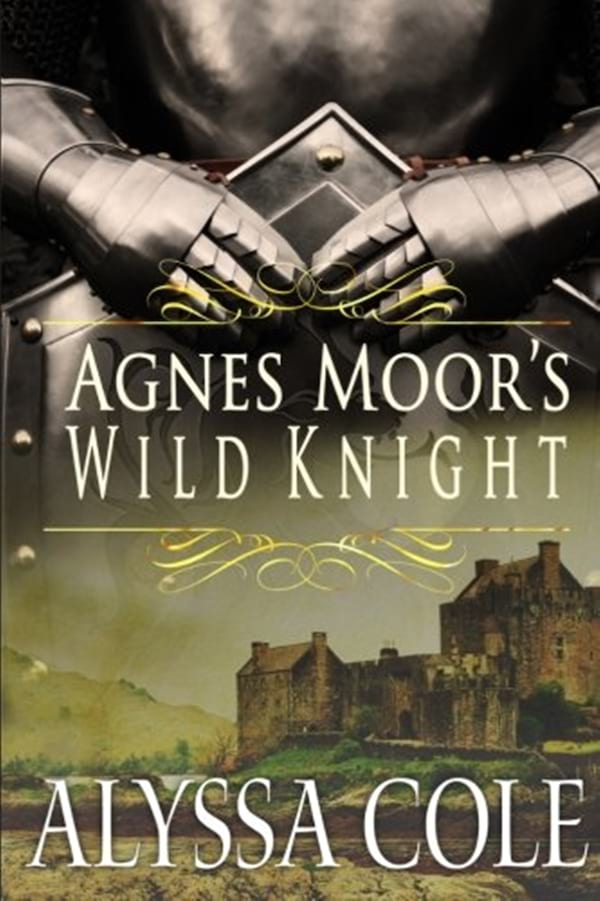 Medieval Romance Novels, cover of Agnes Moor's Wild Knight by Alyssa Cole, books