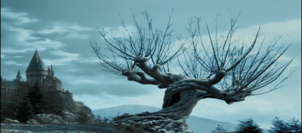 Whomping Willow, harry potter, movies