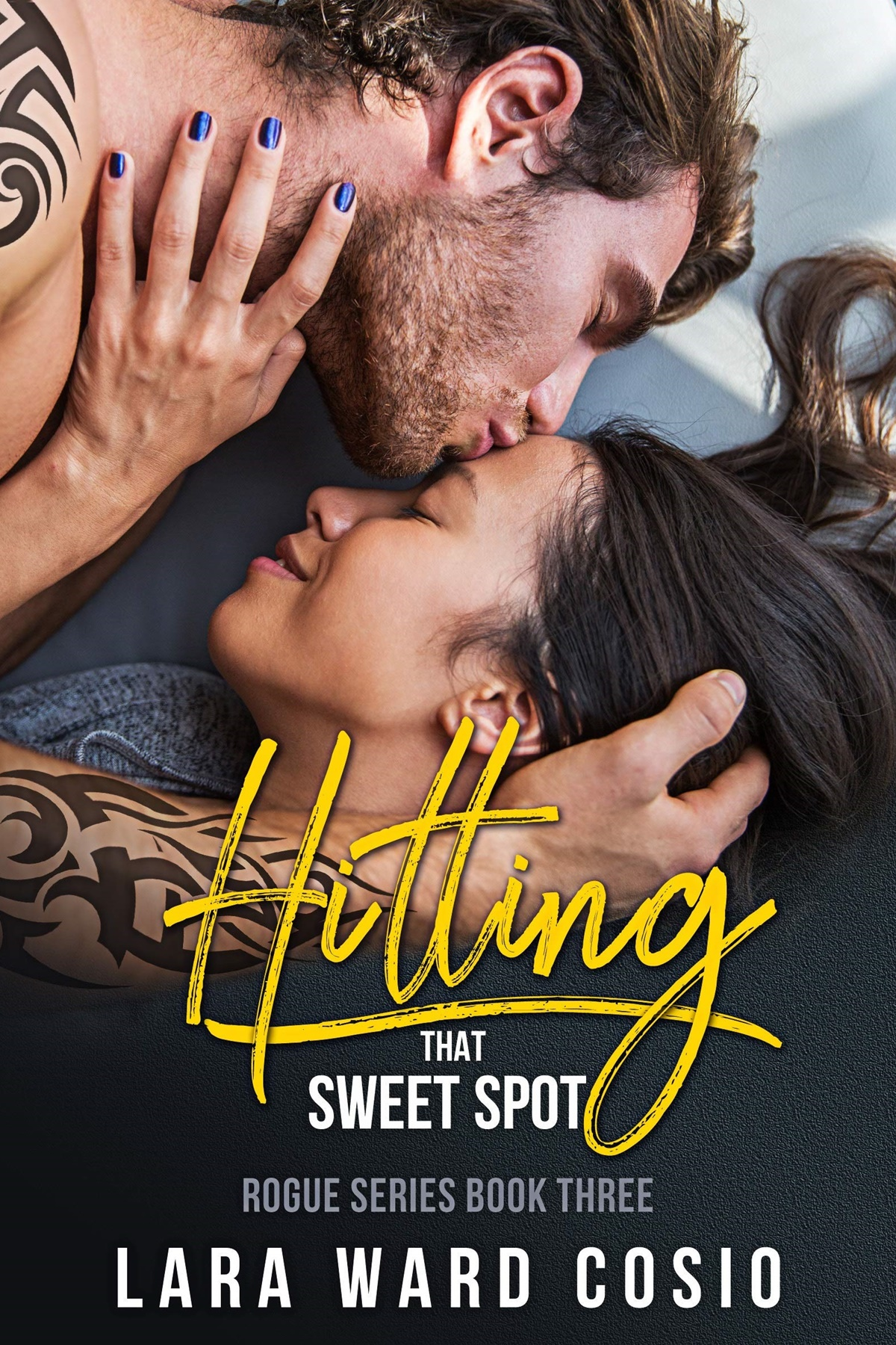 Rocker Romance Novel, cover of Hitting That Sweet Spot by Lara Ward Cosio, books