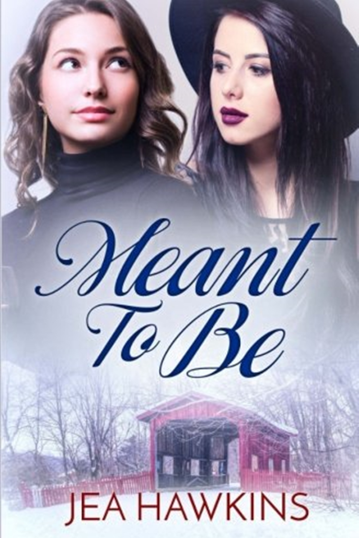 Rocker Romance Novels, cover of Meant to Be by Jea Hawkins, books