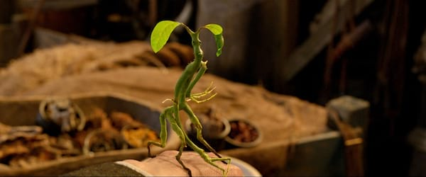 harry potter, Bowtruckle, movies