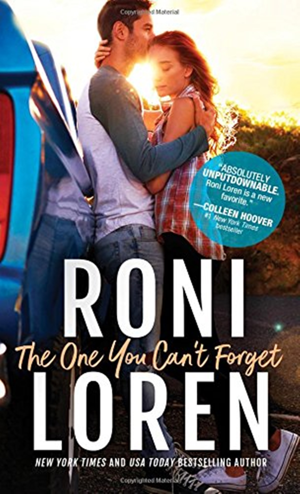 Summer Romance Reading List, book cover of The One You Can't Forget by Roni Loren, books