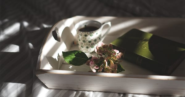 Read Romance Novels Online, photo of a mug of coffee, a flower, and a book on a white tray on a bed, books