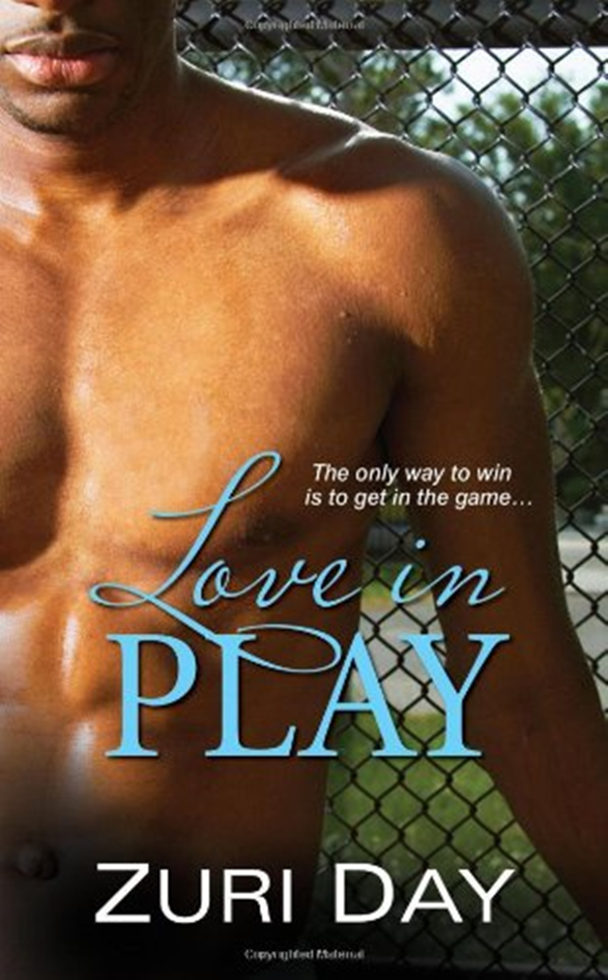 Sports Romance Novels, cover of Love In Play by Zuri Day, books