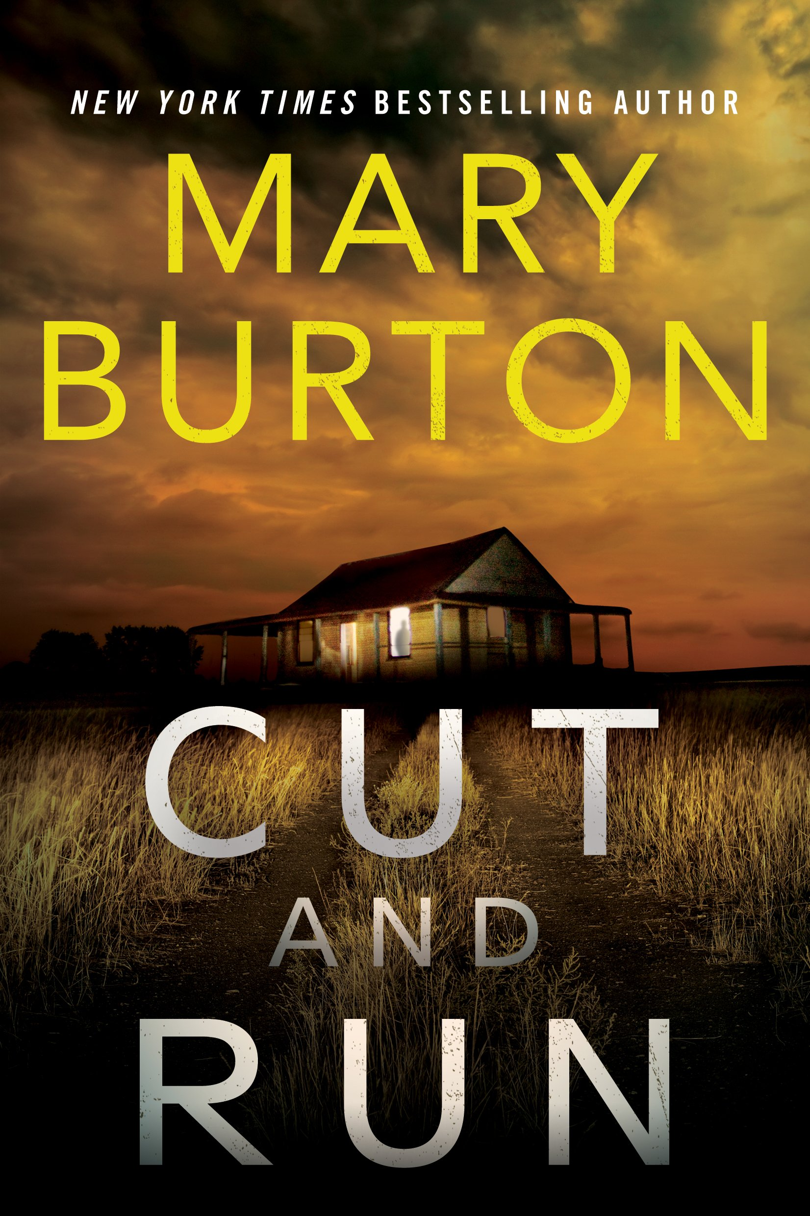 Mystery Romance Novel, cover of Cut and Run by Mary Burton, books