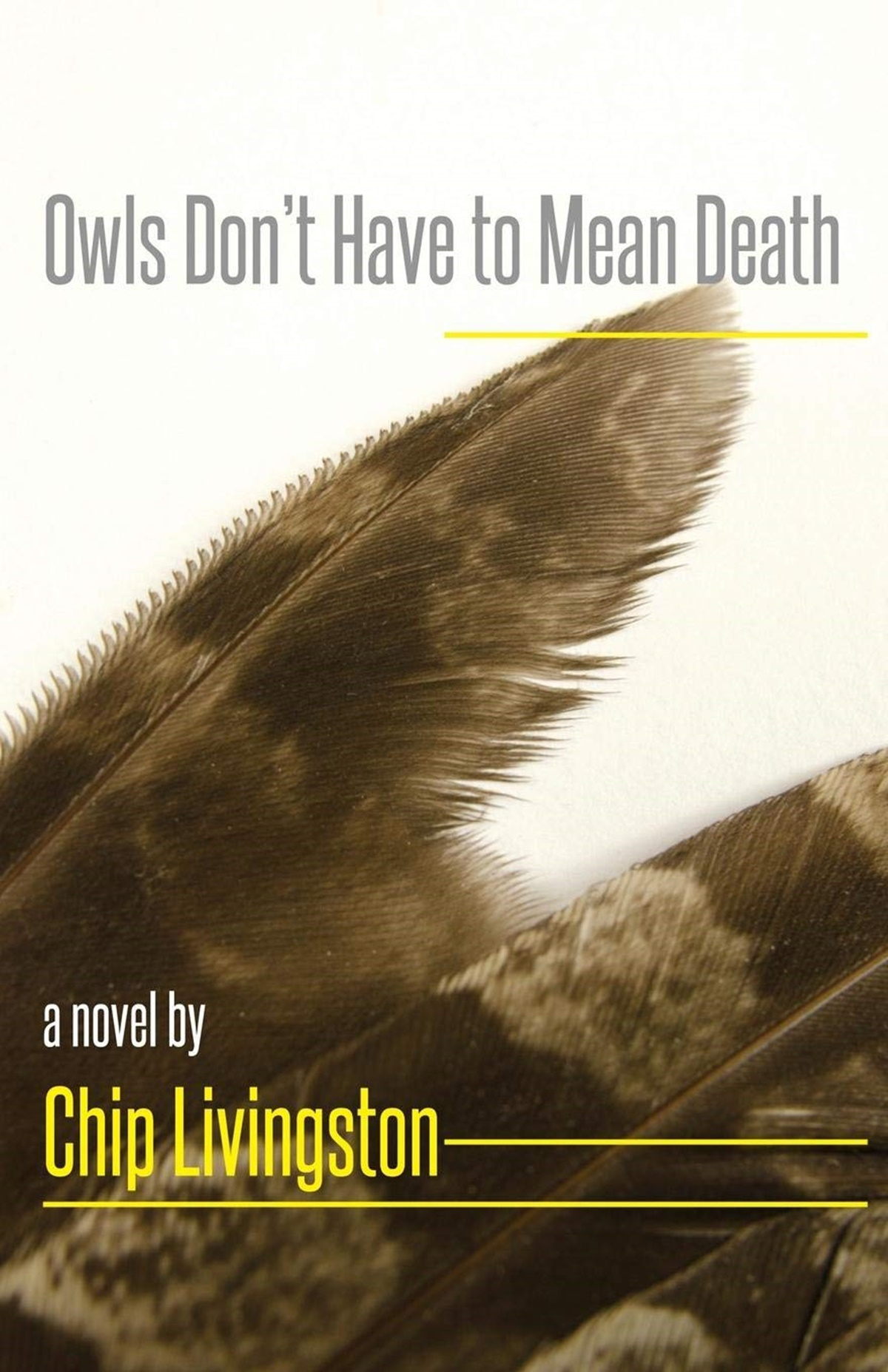 Native American Romance Novels, cover of Owls Don't Have to Mean Death by Chip Livingston, books