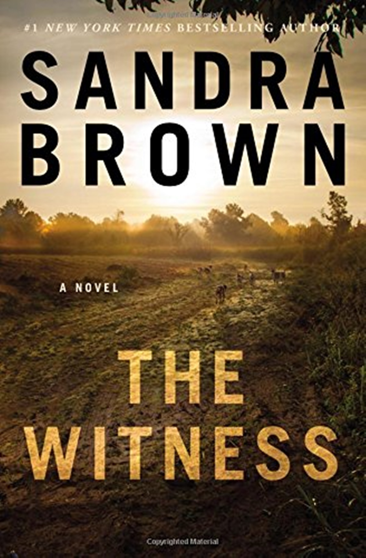 Sandra Brown Books, the cover of The Witness by Sandra Brown, books