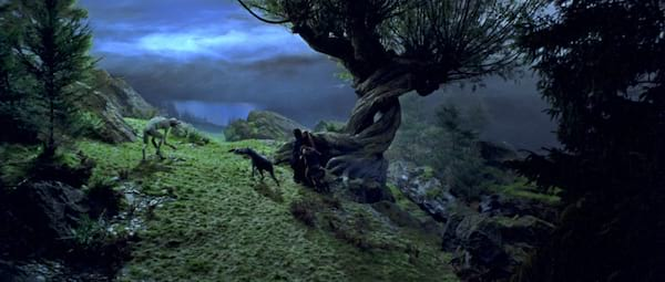 harry potter, Whomping Willow, movies