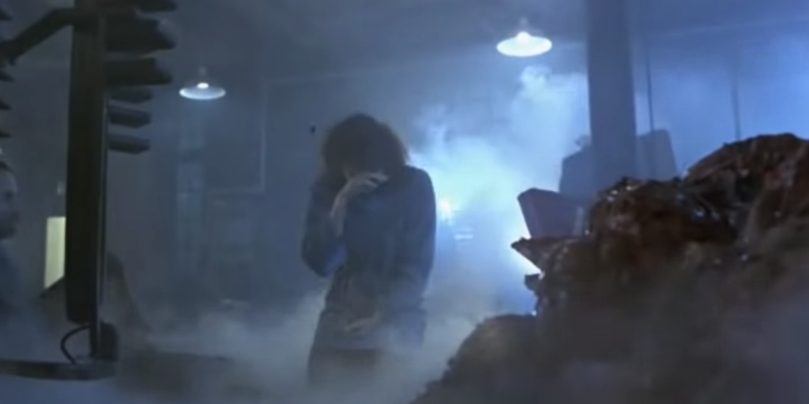 sci-fi movie end scene, movies, The Fly