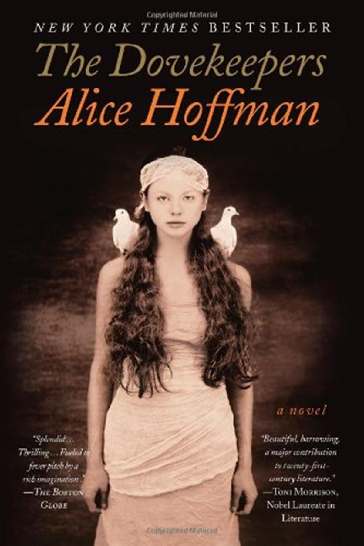 Historical Fiction Novels, the cover of The Dovekeepers by Alice Hoffman, books