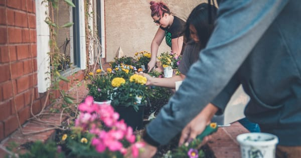 People planting flowers for Earth Day
