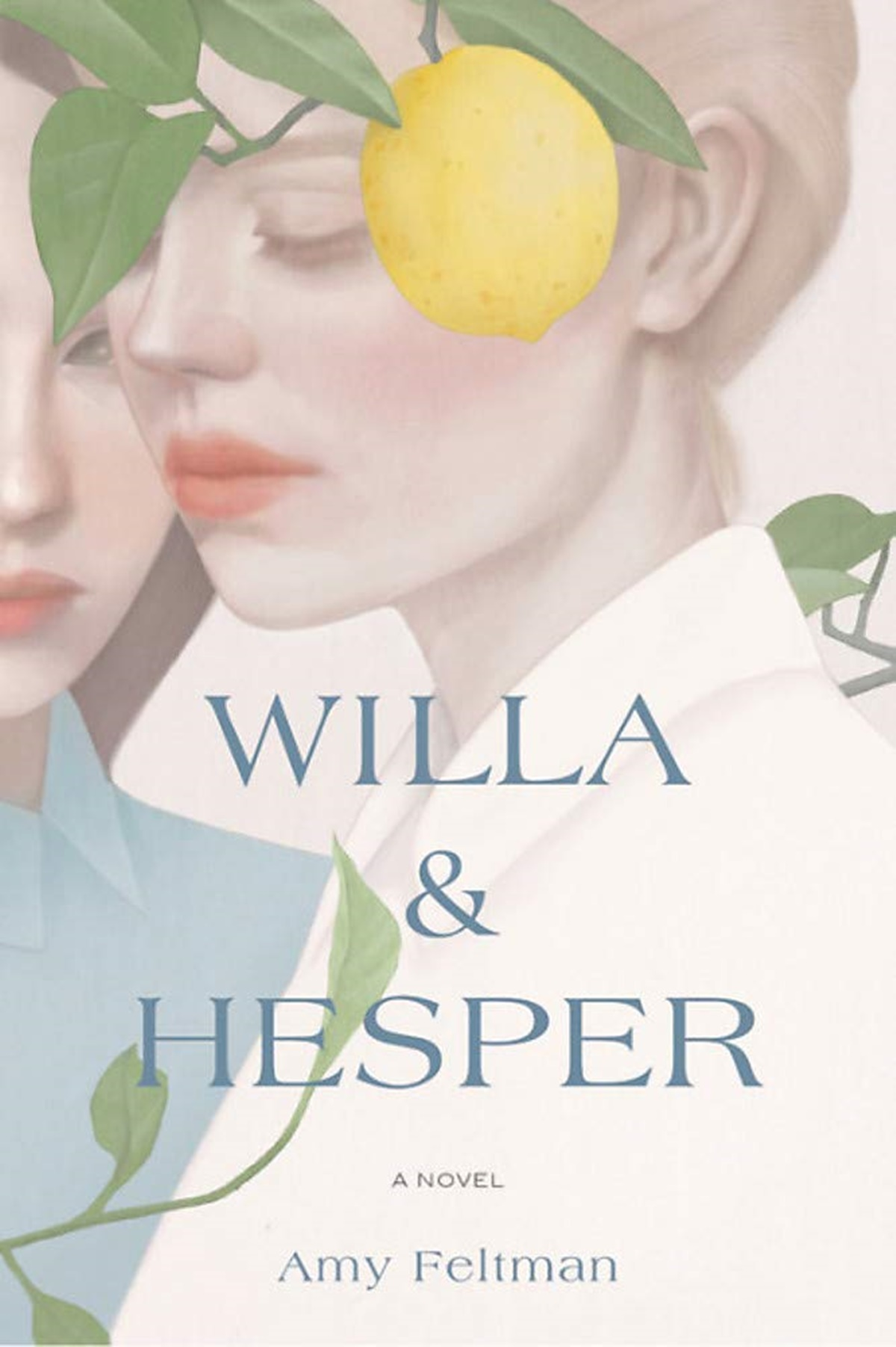 Jewish Romance Novels, cover of Willa and Hesper by Amy Feltman, books