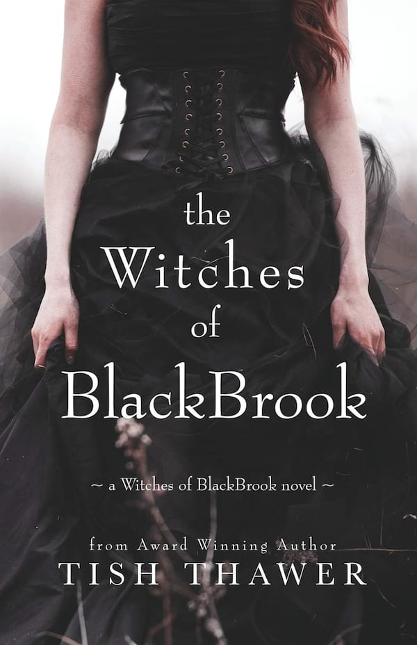 Witch Romance Novel, cover of The Witches of BlackBrook by Tish Fowler, books