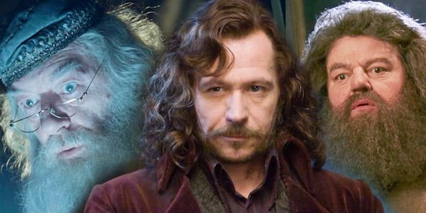 sirius, dumbledore, hagrid, harry potter personality quiz, potter, harry potter