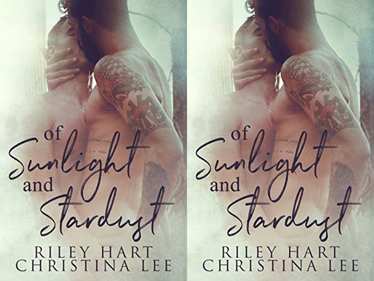 First Romance Novels, cover of the book of sunlight and stardust by christina lee and riley hart, books