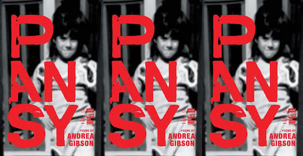 lgbt poems, pansy by andrea gibson, books
