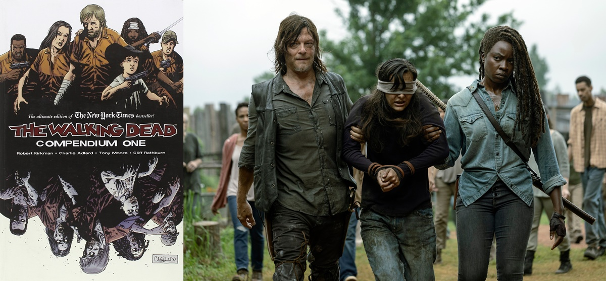 books adapted into tv shows, the walking dead, tv, books
