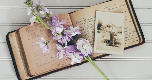 books like the nightingale, image of an old journal with an old photograph and a stem of purple flowers, books