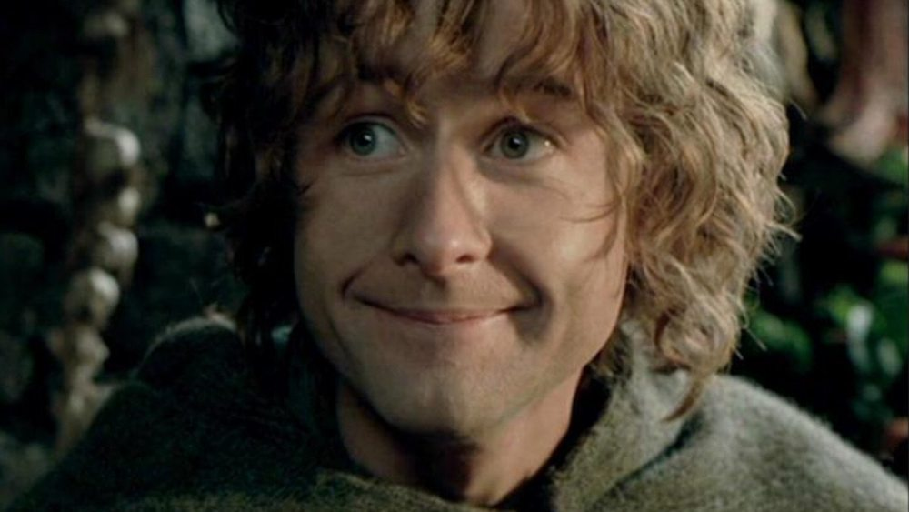 Pippin, Lord of the Rings