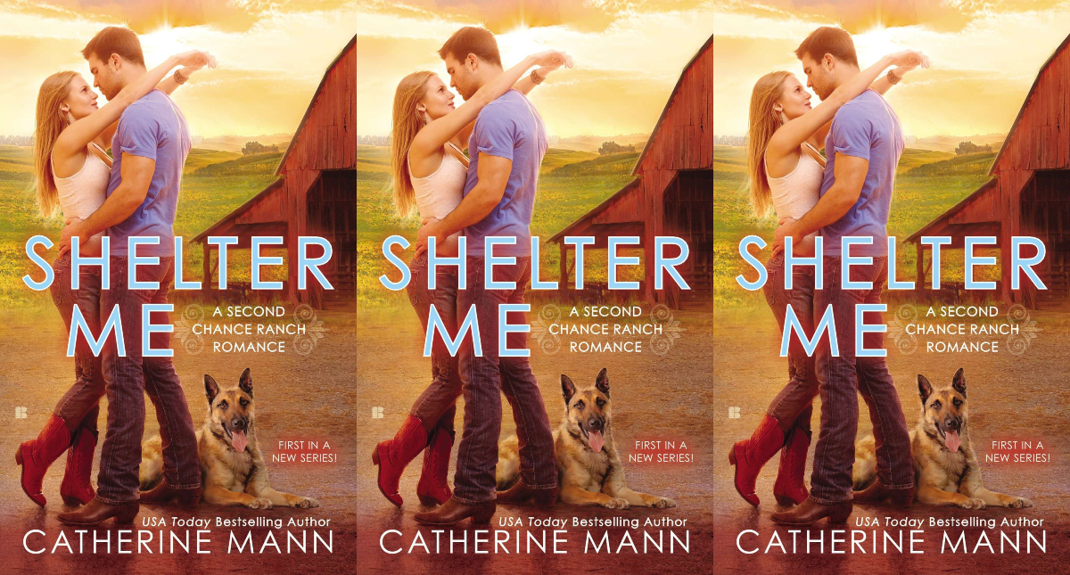 romance novels about animal lovers, shelter me by catherine mann, books