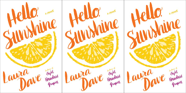 books you can read in a weekend, hello sunshine by laura dave, books