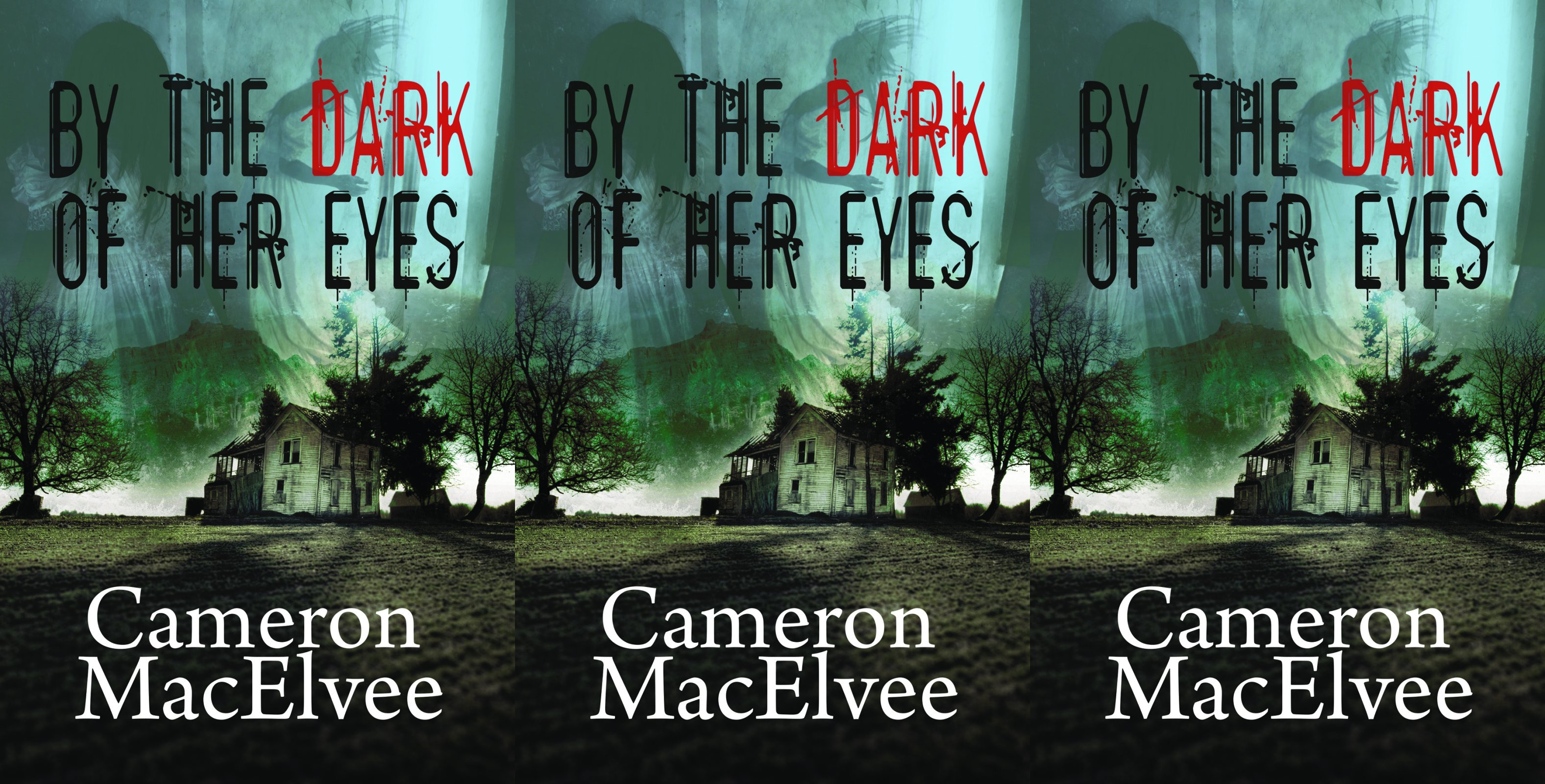 books about haunted houses, by the dark of her eyes by cameron macelvee, books