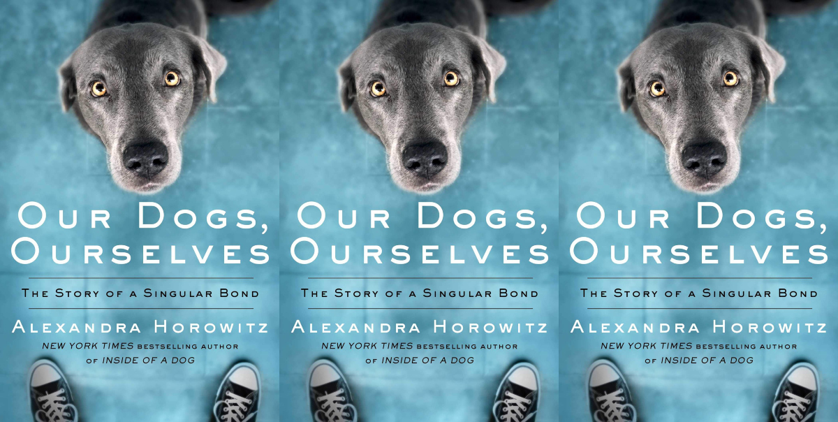 books about dogs, our dogs ourselves by alexandra horowitz, books, animals
