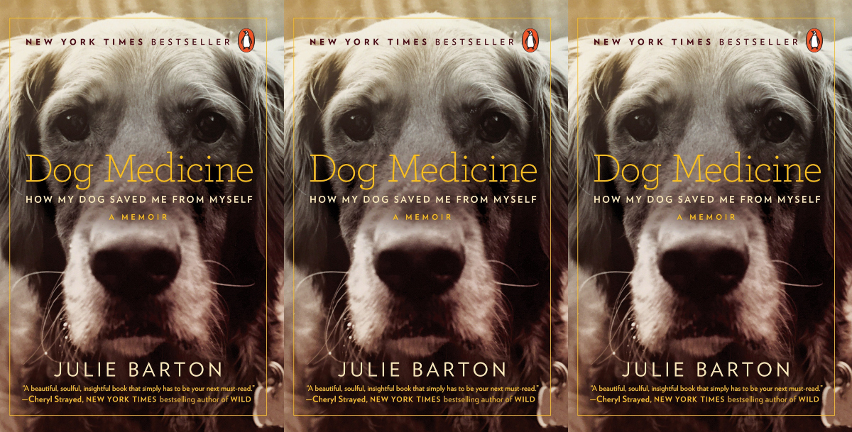 books about dogs, dog medicine by julie barton, books, animals