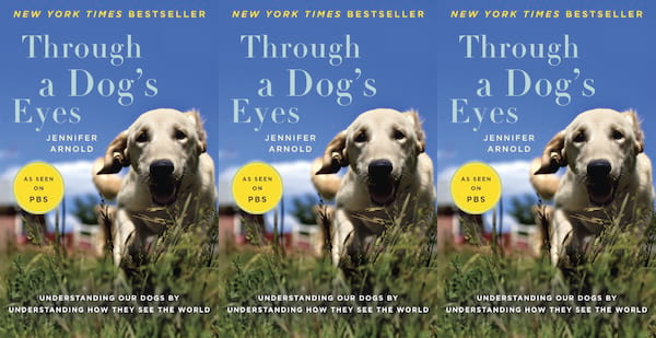 books about dogs, through a dog's eyes by jennifer arnold, books, animals