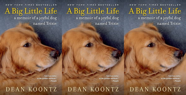 books about dogs, a big little life by dean koontz, books, animals