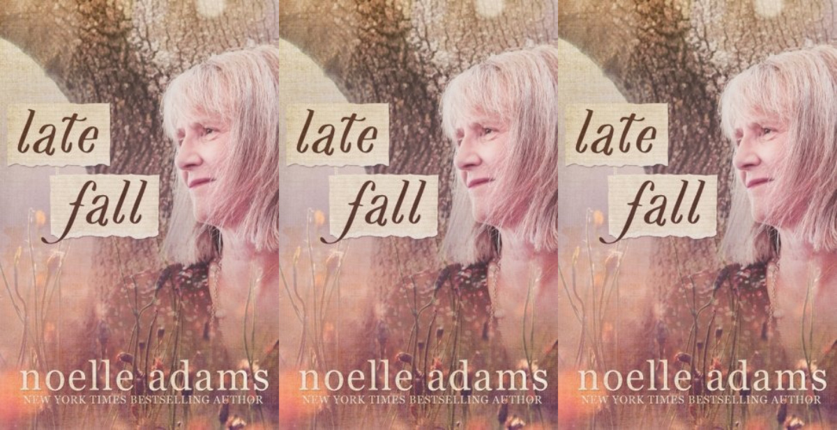 romance books with older couples, late fall by noelle adams, books