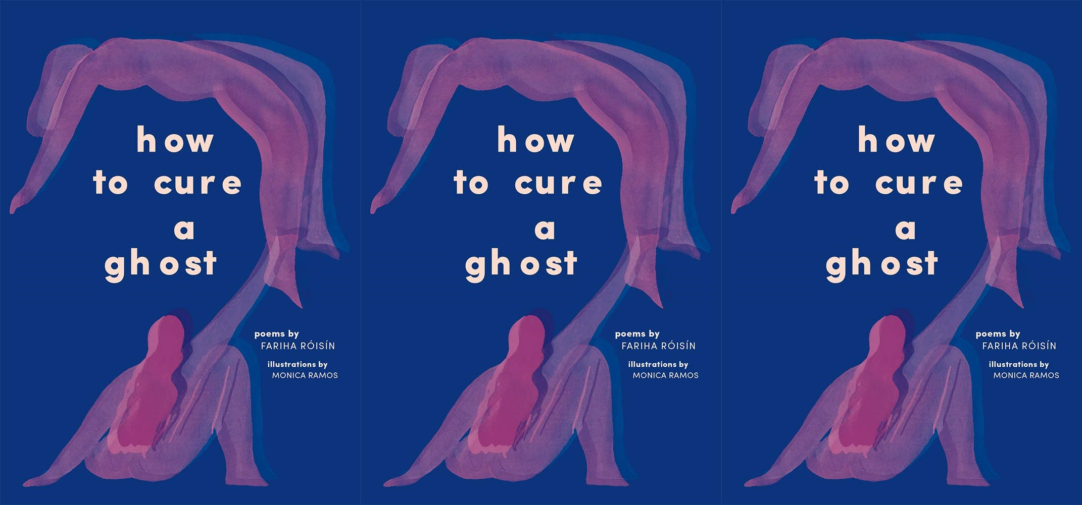 upcoming poetry collections, how to cure a ghost by fariha roisin, books