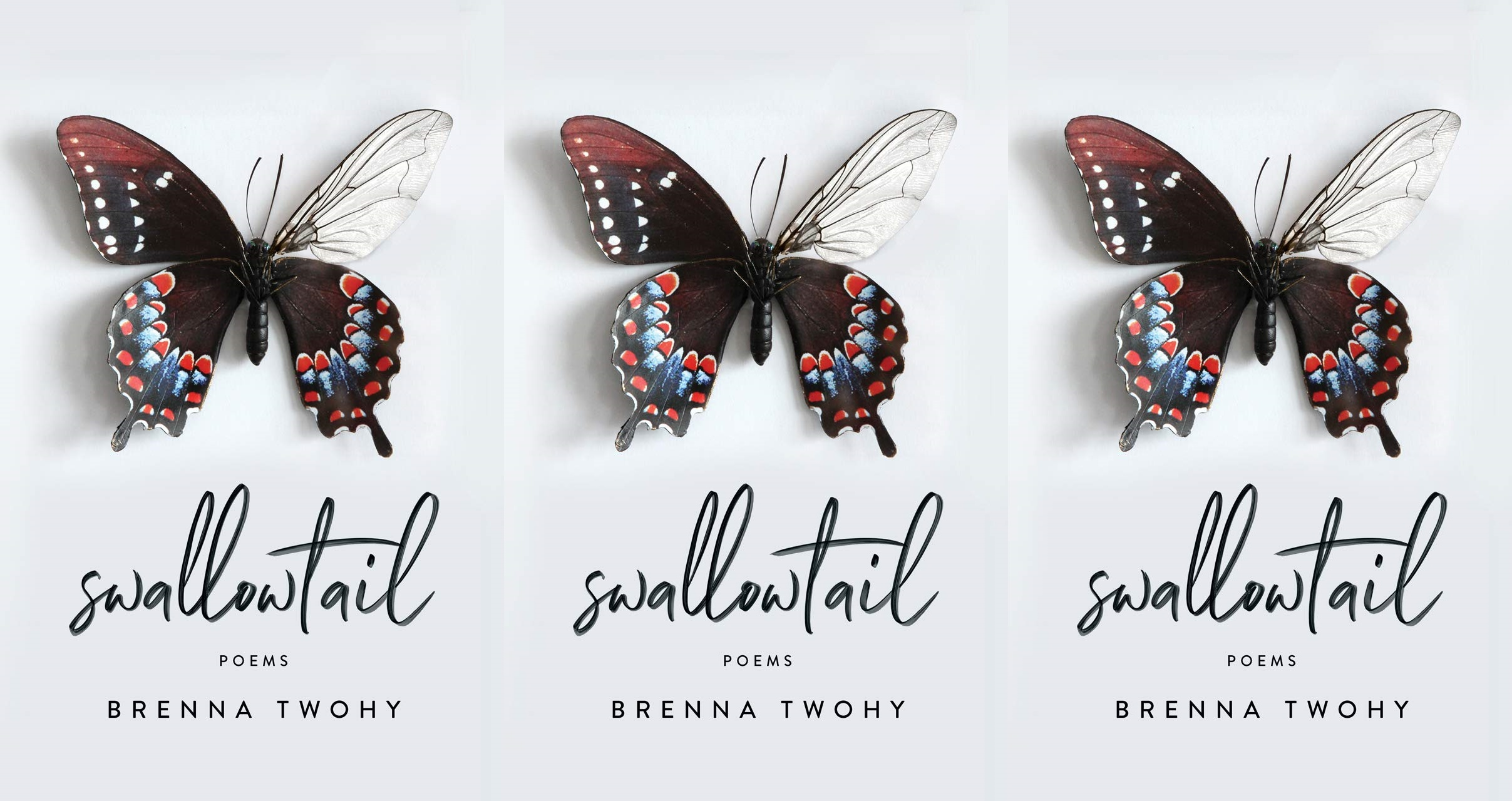 upcoming poetry collections, swallowtail by brenna twohy, books