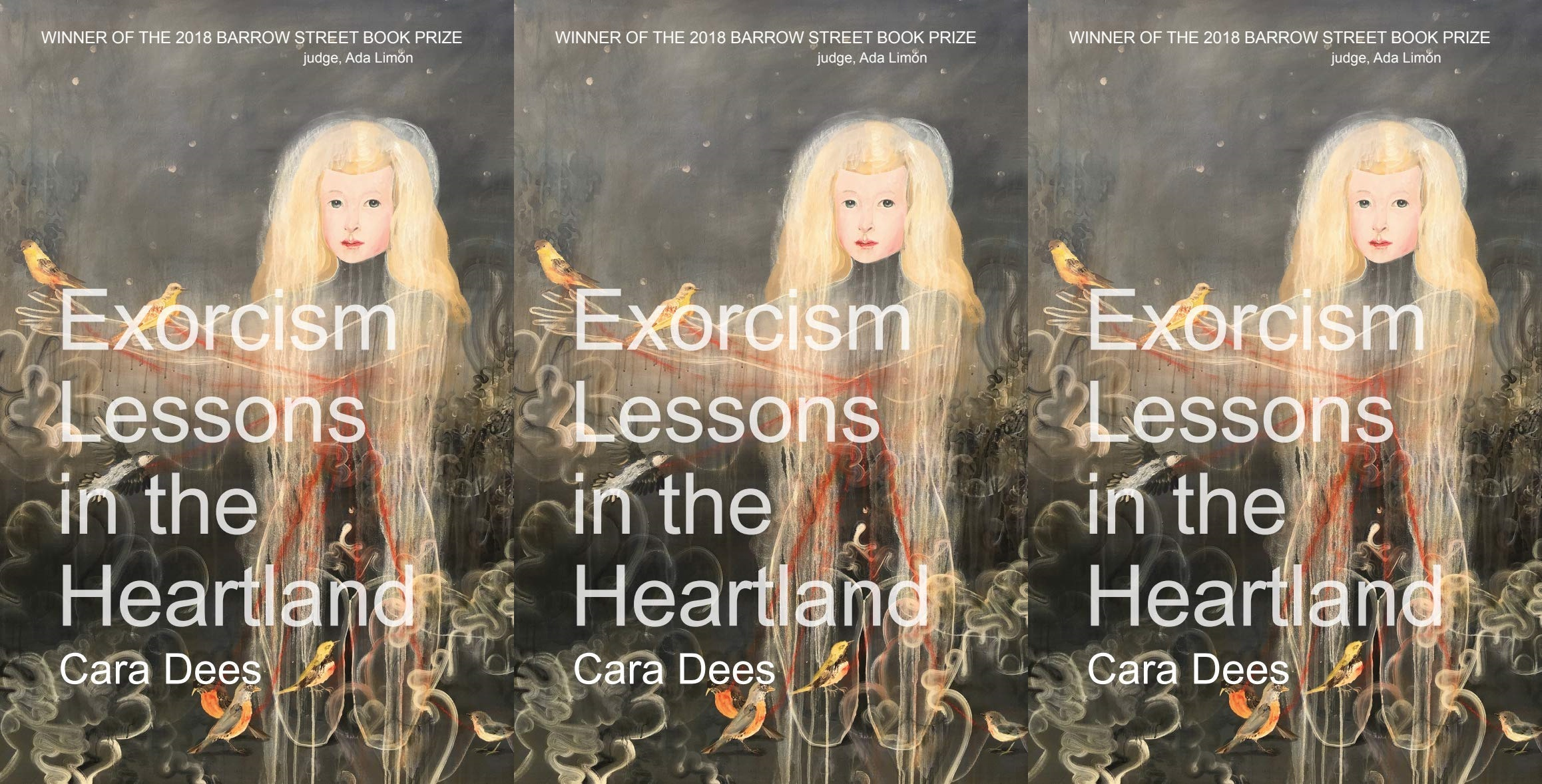 upcoming poetry collections, exorcism lessons in the heartland by cara dees, books