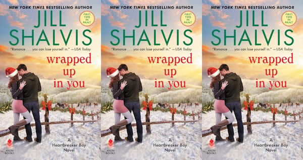christmas romance novels, wrapped up in you by jill shalvis, books