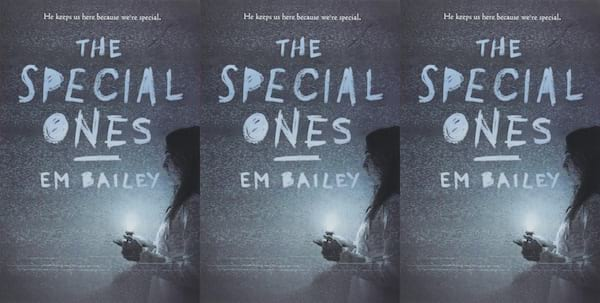 teen horror novels, the special ones by em bailey, books
