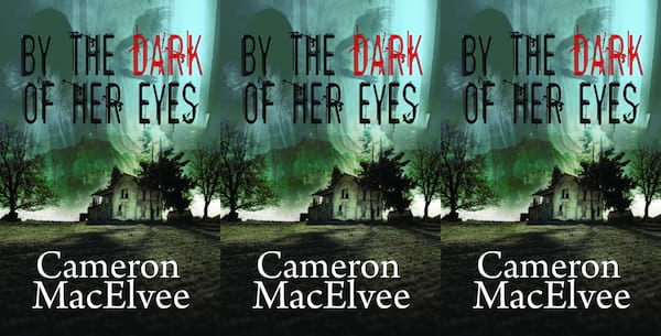 underrated horror novels, by the dark of her eyes by cameron macelvee, books