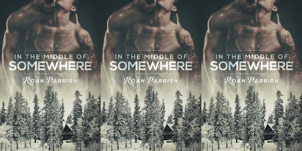 midwest romance novels, in the middle of somewhere by roan parrish, books