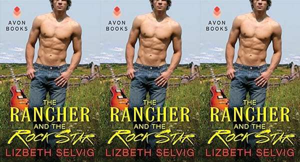 midwest romance books, the rancher and the rock star by lizbeth selvig, books
