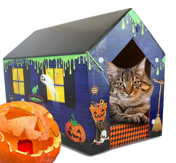 ASPCA Haunted Cat Scratching Pad from Amazon