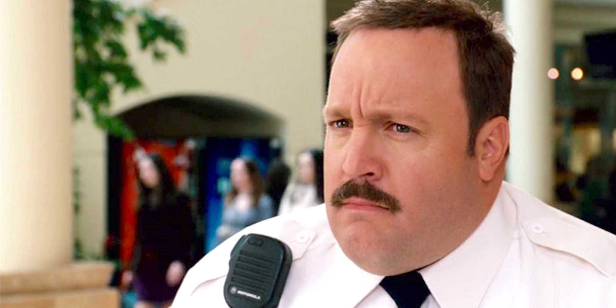 mall cop, police, lawyer, law, america