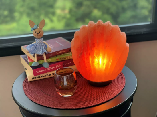 Sea Shell-shaped Himalayan Salt Lamp sitting on a desk side table in front of books