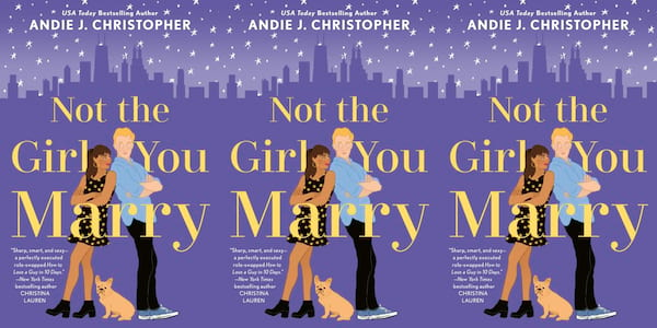 november romance novels, not the girl you marry by andie j christopher, books