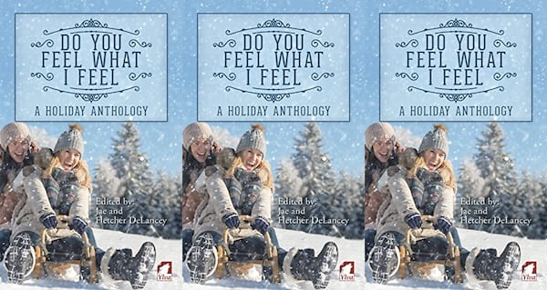 queer christmas novels, do you feel what i feel a holiday anthology, books