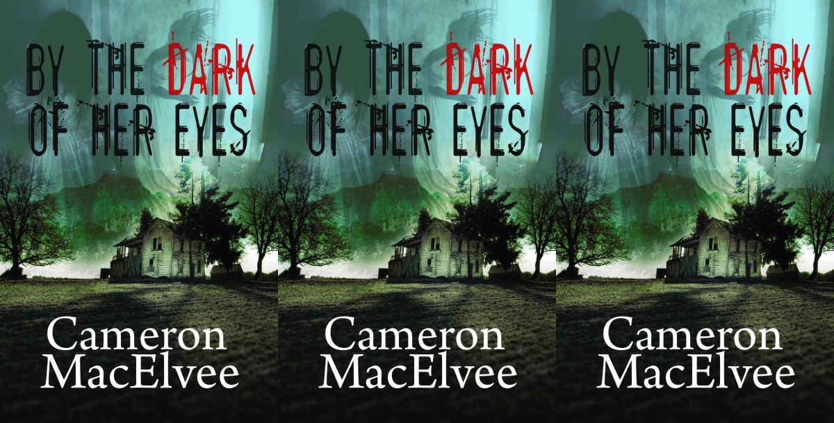 my favorite books of 2019, by the dark of her eyes by cameron macelvee, books