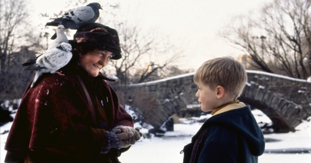 home alone 2 snow kevin mcallister central park