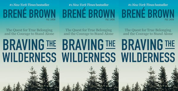 self care books, braving the wilderness by brene brown, books