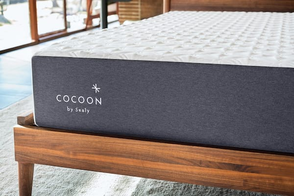 The Cocoon Chill by Sealy