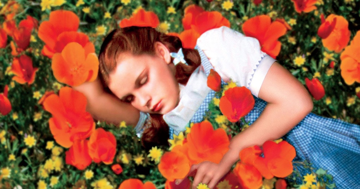 the wizard of oz movie Dorothy laying in a field of flowers