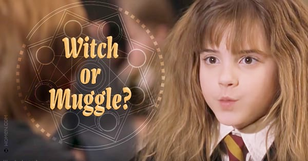 witch or muggle, Muggle, witch, hermione